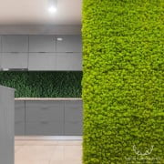 sciana spring green