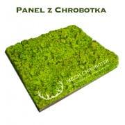 nowoczesny-panel-z-chrobotka-spring-green