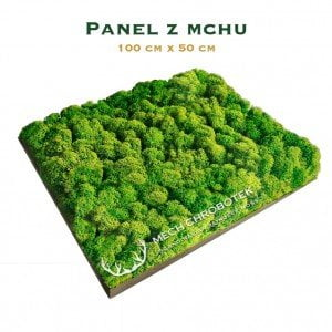 panel z mchu spring green 100x50
