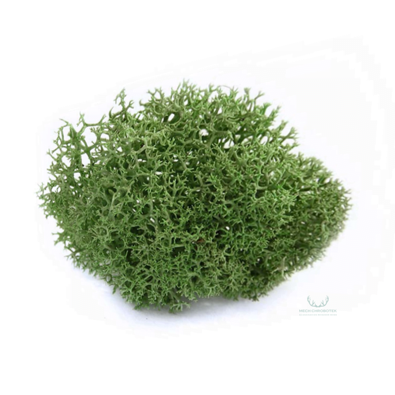 mech zielony