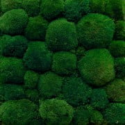 mech-poduszkowy-ciemno-zielony