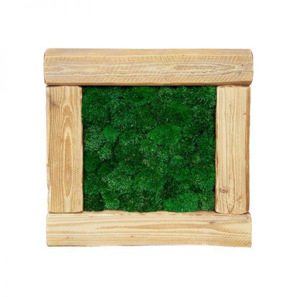 obraz-stare-drewno-old-wood-56x56cm-56-56-drewniany-mech-poduszkowy-ciemny-ciemnozielony-ball-pillow-moss-poduszka