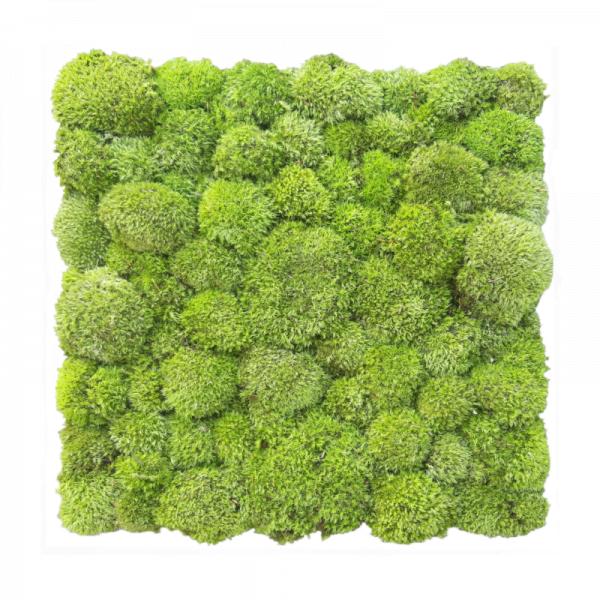 panel-z-mchem-poduszkowym-jasnym-poduszka-jasnozielona-50x50cm-50-kulisty-jasnozielony-lght-green