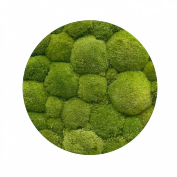 mech-poduszkowy-jasna-zielen-jasnozielony-1kg