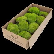 mech-poduszkowy-light-green-jasnozielony-200g
