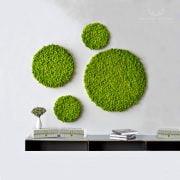 panel_kolo_fi50_srednica_50cm_chrobotek_dark_green_spring_green_jasnozielony_ciemnozielony_sciana_z_mchu_panel_okragly_realizacja