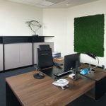 Chrobotek w biurze