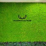 Zielona ściana scandinavian moss